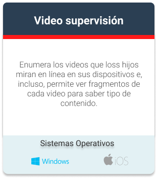 Video supervisión